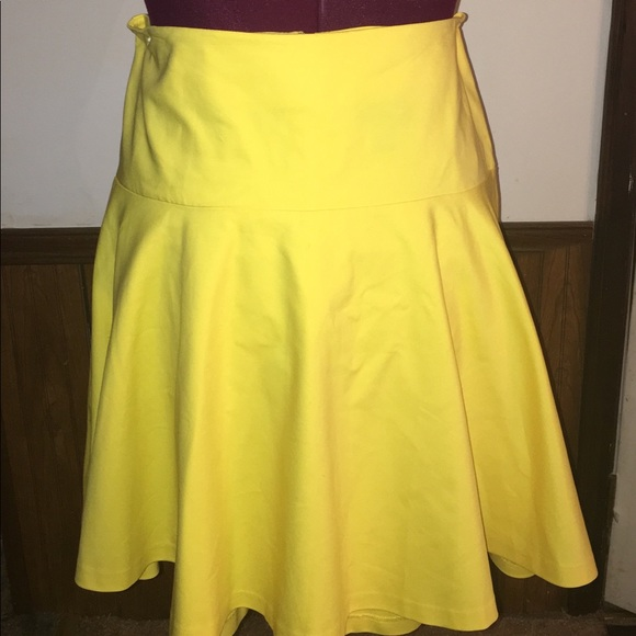 Lane Bryant Dresses & Skirts - Plus Size Circle Skirt